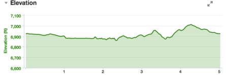 It felt a lot hillier than it looks. I swear.