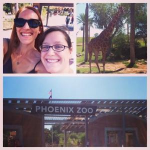 If you're near the Phoenix Zoo, go! I was seriously impressed by how nice it was.