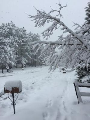 snowday